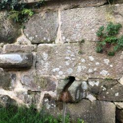 Fonte Do Rio Meixide Santa Maria De Cela 1